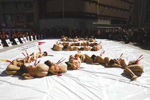 裸体美女抗议斗牛