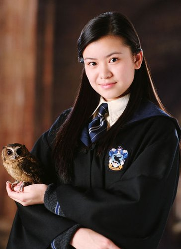 2010年英国十大杰出华人青年候选人梁佩诗