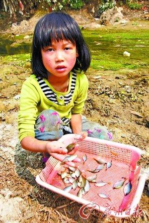 贵州84县连续226天无雨成特重旱灾区(图)