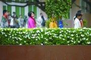 福建南平校园惨案续:一受伤学生或成植物人