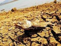 灾区直击:贵州省安顺地区