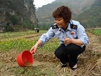 灾区直击:那坡县国家税务局抗旱救灾