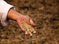 实拍:一个重旱村的生活实录