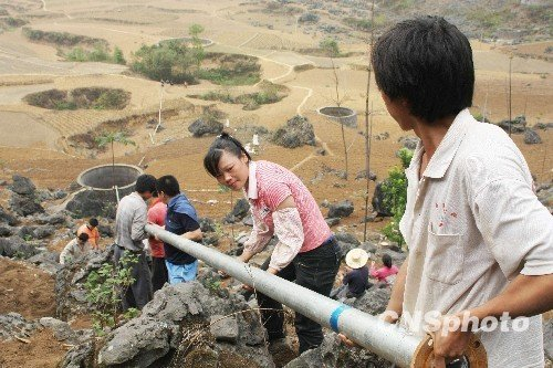 图:广西凤山跨县引水抗大旱