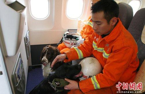 组图:302名消防队员从成都飞赴青海玉树震区