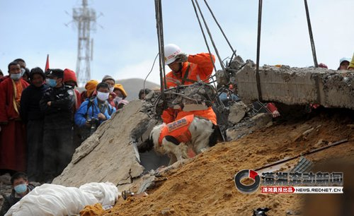 青海玉树地震遇难人数达到1484人(组图)