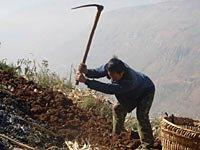 组图:岔路社农民的生活写照