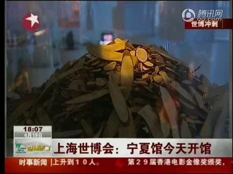 视频:宁夏馆开馆试运行 演绎塞上江南