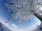 新疆哈巴河县出现千里霜挂