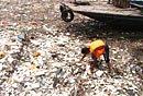 三峡库区漂浮垃圾可载人