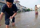上饶城区内涝 市民街道撒网捕鱼