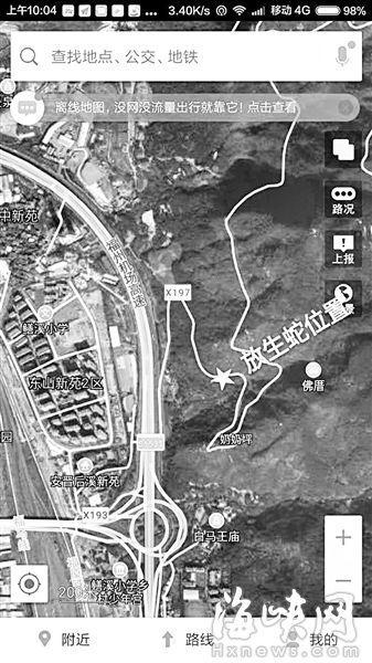 福州一县道现5条被放生毒蛇 距小学仅500米(图)