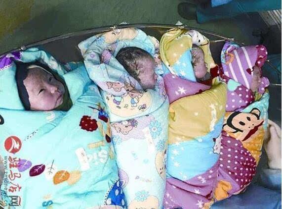 大三男生毕业前当上四胞胎爸爸 曾向医生求助减胎