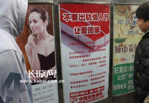 石家庄现500余反色情广告:情人节不要出轨(图)