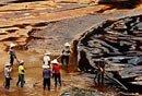 实拍紫金矿业污染事故