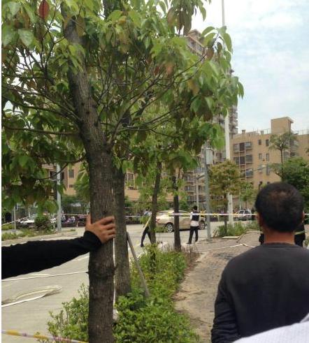福州闽侯被曝发生恶性撞人事件 网友称有人死伤
