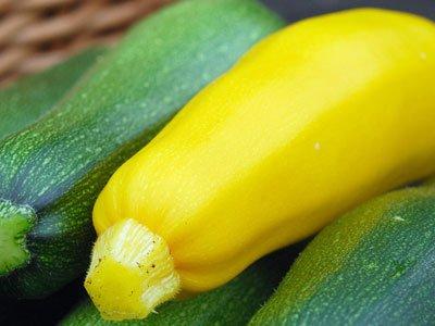 养生须知:滋阴润肺 秋季最适宜的三种食物