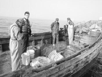 大连抓获偷捕渔船260余搜 船员欲载执法者逃跑