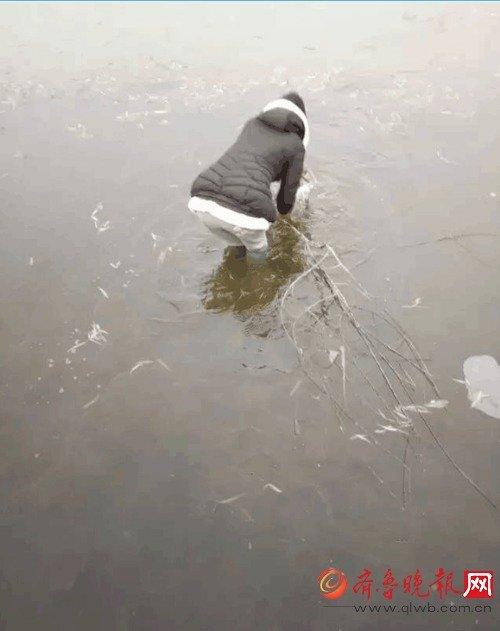 """山东女子学院大二女生贾同凤跳进湖里救野兔也让她成了学生朋友圈的""""名人""""。"""