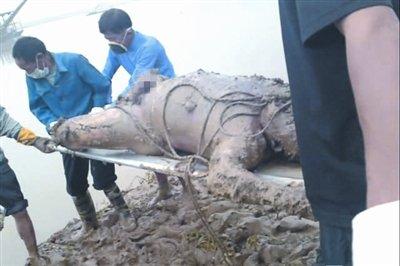 湖南上访村官浮尸江中 家属疑其被殴打致死抛尸