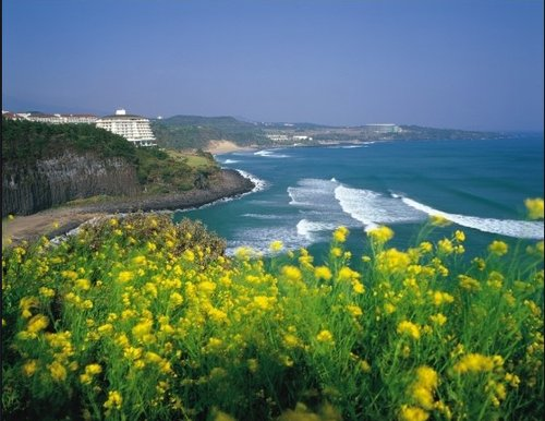 国庆期间济州岛或迎7万中国游客