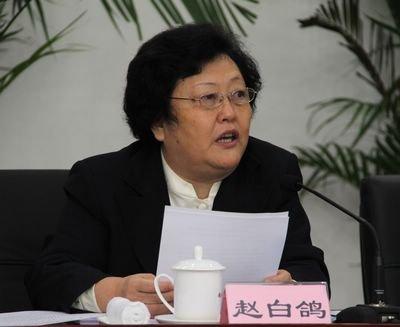 中国红会副会长:红十字会治理是全球性难题