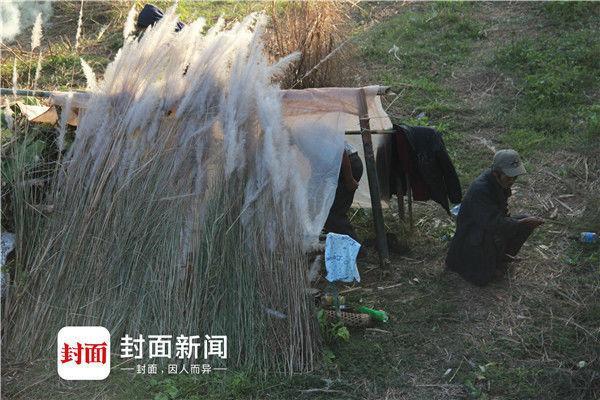 对话在缅战区中国人:听着枪炮声睡觉 怕被抓壮丁