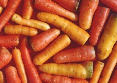 秋冬养生:换季必吃的5款暖身滋补蔬菜(图)