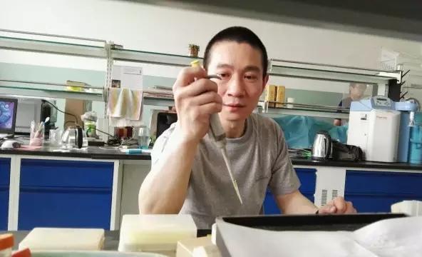 韩春雨基因编辑技术恐遭弃用:数百个基因中重复失败