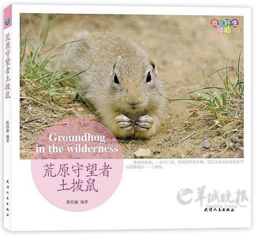 守望幸福 我的野生动物邻居