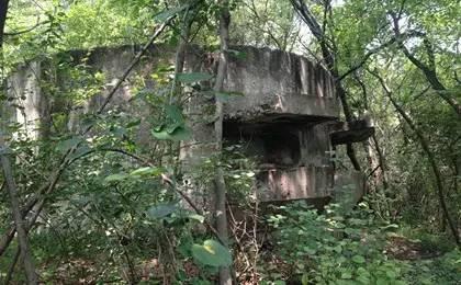 军事遗迹亟待保护:功勋战舰因保护不善被拆解
