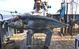 浙江人南海钓到创纪录超大金枪鱼