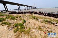长江中下游出现60年罕见旱情:塘堰变陆地