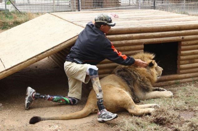 组图:美国动物园雄狮和小狗形影不离成好伙伴