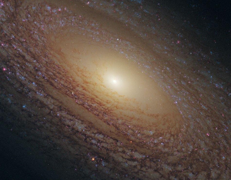 这张照片由哈勃空间望远镜拍摄,展示的是漩涡星系NGC 2841的巨大