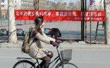 """清华大学挂满横幅迎接""""女生节"""""""