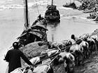三峡1946:美媒巨资摄