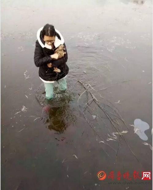 山东女大学生跳冰湖救野兔
