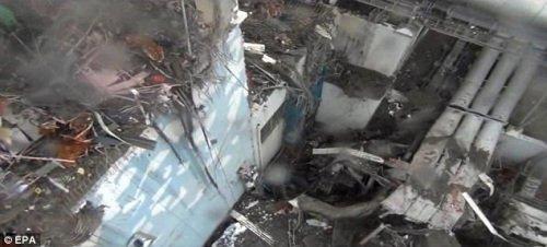 英专家称福岛核电站重新恢复安全或需一世纪