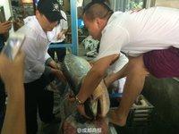 四川父子钓起98.4斤重鳡鱼 身长1.63米 - 牛南山 - kzjy400的博客