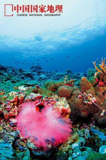探秘南沙群岛:石油开采队伍中没有我国公司