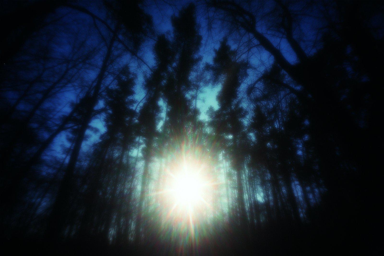 《太阳》系列作品。摄影/野口里佳