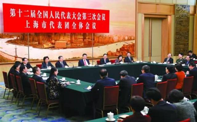 代表称习近平对国外反腐败法有研究