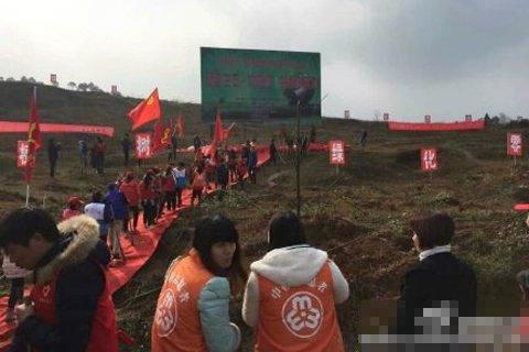 湖南永州领导踩红毯植树被质疑 回应:下雨路滑