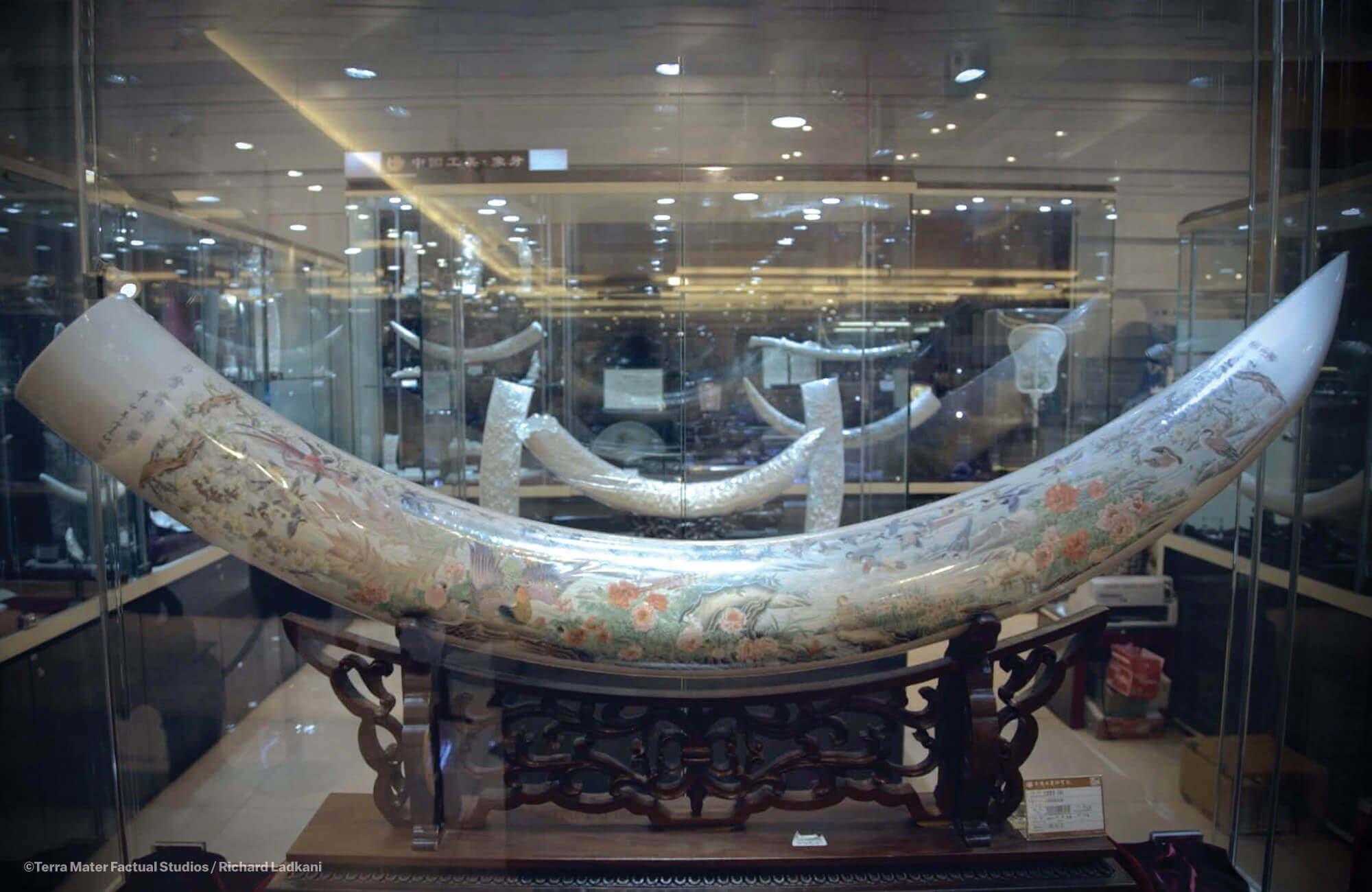北京象牙工艺品店里陈列的象牙。