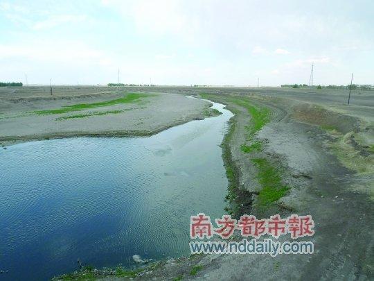 失水鹤乡:向海和莫莫格湿地正在干渴中消失
