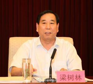 河北省委原副秘书长梁树林涉嫌受贿犯罪被捕