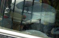 组图:北京广渠门溺亡车主驾驶车辆曝光