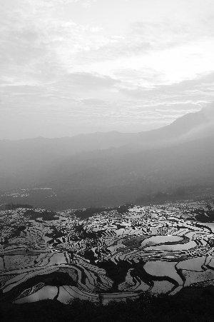 云南哈尼梯田申遗成功 遗产区面积达16603公顷