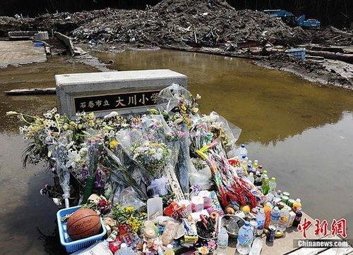 宫城县大川小学遭海啸吞噬 惨痛教训启示未来